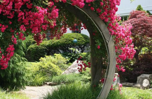 Large circular wooden gate covered with beautiful pink flowers and lush trees and plants in the background