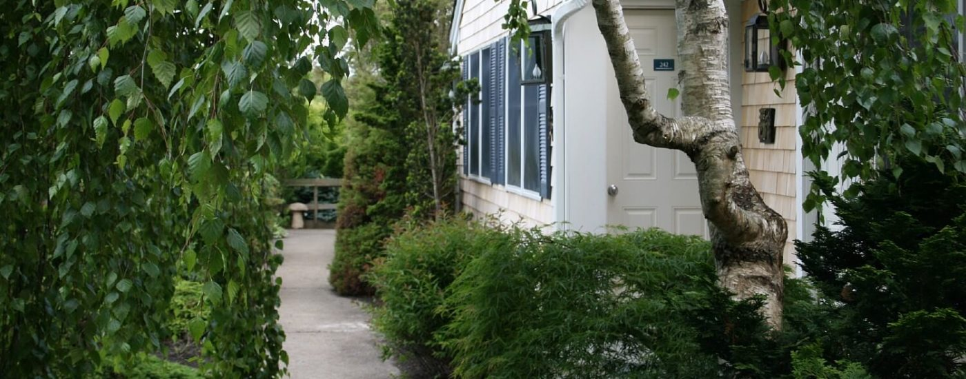 Front door of a studio apartment surrounded by lush green trees and bushes with a cement sidewalk