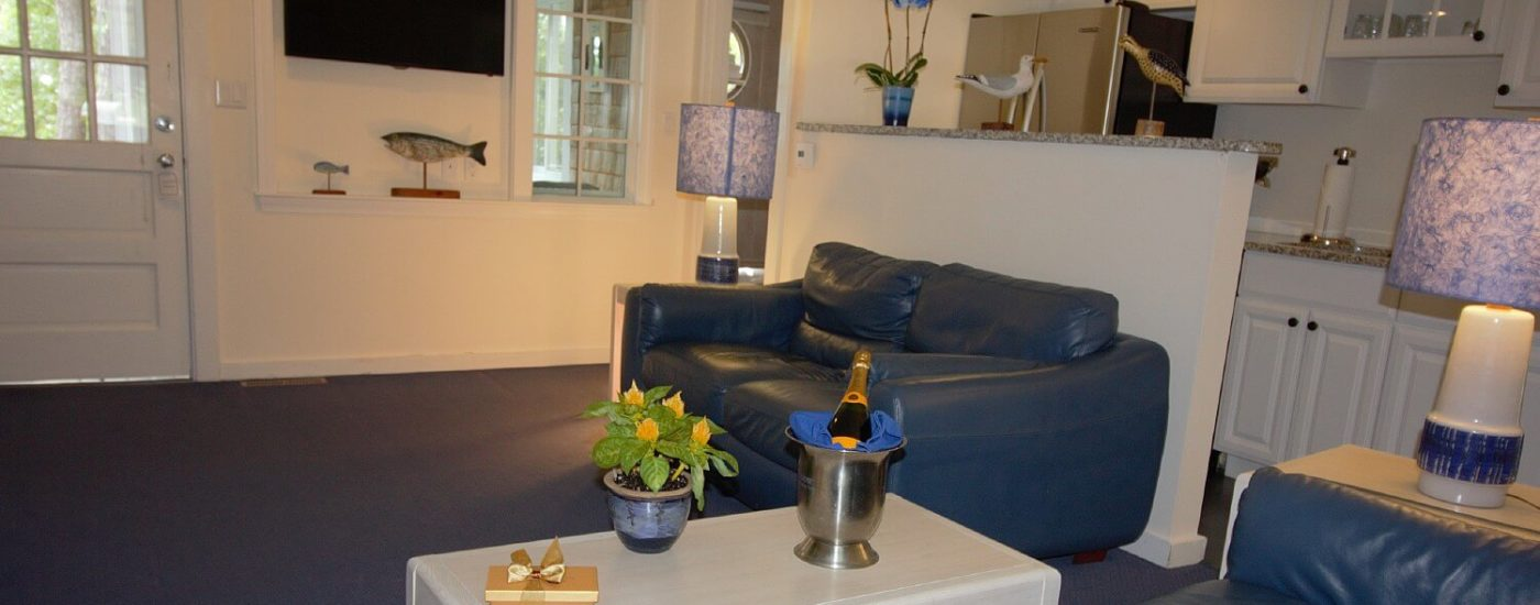 Living area of a cottage with blue leather couches, coffee table, TV and kitchenette behind a half wall